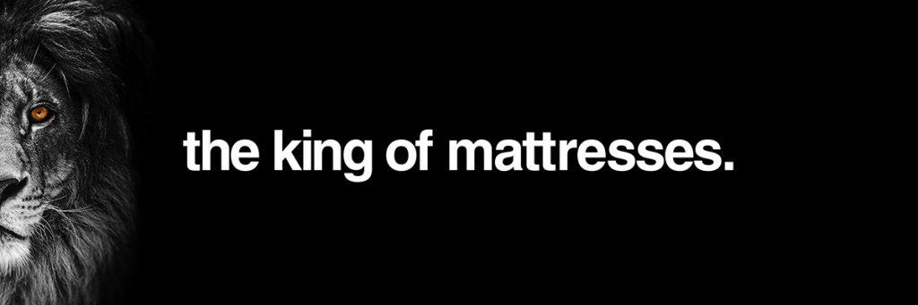 lion memory foam mattress